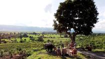 Private: Cycling to a Vineyard to enjoy Sunset and Wine from Inle Lake, Inle Lake, Private ...