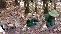 Private Cu Chi Tunnels - Half-Day guided Tour from Ho Chi Minh City, Ho Chi Minh City, Private ...