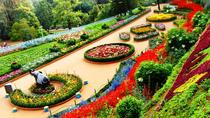 3-Night Ooty Private Luxurious Tour from Coimbatore, Coimbatore, Multi-day Tours