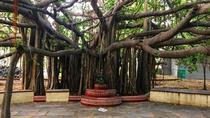 Kalakshetra, Theosophical Society and Elliots Beach - 'A trip to were nature meets with arts and...