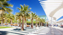 Malaga Private Walking Tour, Malaga, Day Trips