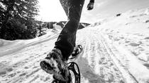 Okanagan Mountain Top Snowshoe Adventure, Kelowna & Okanagan Valley, Ski & Snow