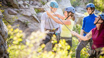 Rock Climb in Okanagan: 4-Hour Beginner Skills Course, Kelowna & Okanagan Valley, Climbing