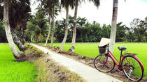 Explore Non-Touristy Mekong Delta with Biking Small Group Tour from Ho Chi Minh, Ho Chi Minh City,...