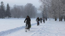Tallinn Winter Bike Tour with Cafe Stop and Market Visit, Tallinn, Bike & Mountain Bike Tours