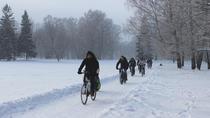 Tallinn Winter Bike Tour with Cafe Stop and Market Visit, Tallinn, Bike & Mountain Bike Tours
