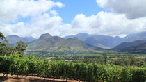 5-Day West Coast and Winelands Tour from Cape Town, Cape Town, Multi-day Tours