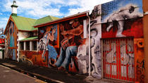 Cape Town City Private Art Tour, Cape Town, Half-day Tours