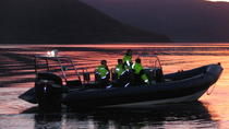 Midnight Sun RIB Cruise from Tromso, Tromso, Day Cruises