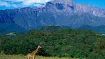 Full Day To Arusha National Park, Arusha, Day Trips