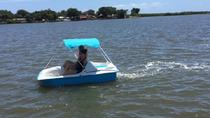 1-Hour Dolphin Pedal Boat Rental in Daytona Beach, Daytona Beach, Boat Rental