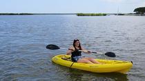 1-Hour Single Kayak Rental in Daytona Beach, Daytona Beach, Kayaking & Canoeing