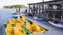 Half-Hour Electric Assisted Pedal Boat Rental in Daytona Beach, Daytona Beach, Boat Rental