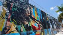 Best of Wynwood: Street Art and Gallery Tour, Miami, Literary, Art & Music Tours