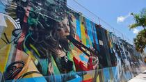 Het beste van Wynwood: Street Art and Gallery Tour, Miami, Literary, Art & Music Tours