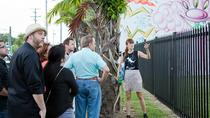 Private Wynwood Street Art and Gallery Tour, Miami, Literary, Art & Music Tours
