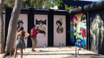 Self-Guided Tour of Wynwood Walls, Miami