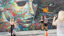 Underground Art Tour of Wynwood, Miami, Walking Tours