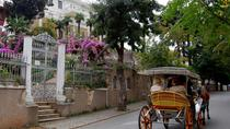 Full-Day Prince Islands Tour Including Lunch From Istanbul , Istanbul, Day Trips