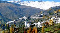 Excursion to the Alpujarra region in Granada, Granada, Day Trips