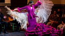 Seville Night Sightseeing Tour and Flamenco Show, Seville, Theater, Shows & Musicals