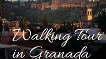 Small-Group Walking Tour in GRANADA, Granada, Walking Tours