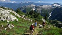 Whistler Small Group Wilderness Half-Day Hike, Whistler, Day Trips