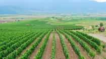 Half-Day Wine Tour from Plovdiv, Plovdiv, Wine Tasting & Winery Tours