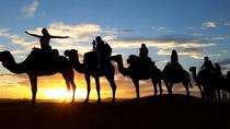 2-Day Zagora Desert Tour from Marrakech, Marrakech, Overnight Tours