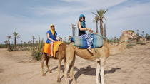 Marrakech Camel Ride, Marrakech, Half-day Tours