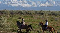 Marrakech Horse Riding, Marrakech, Ports of Call Tours