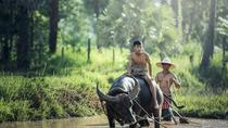 Village Life Tour from Siem Reap, Siem Reap, Cultural Tours