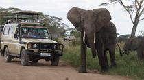 3 Days Serengeti and Ngorongoro Crater Safari from Mwanza ending in Arusha, Serengeti, 4WD, ATV &...