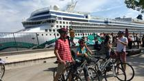 Panoramic Parenzana Biking Tour from Koper or Portoroz or Piran, Koper, Bike & Mountain Bike Tours