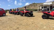 4-Hour Quad ATV Adventure from Philipsburg, Philipsburg