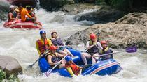 Whitewater Rafting, Elephant Trekking and Ziplining from Phuket , Phuket, White Water Rafting &...