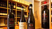 Private Amarone Weinprobe Tour von Mailand mit dem Auto, Milan, Wine Tasting & Winery Tours
