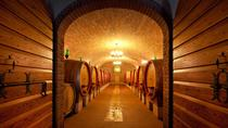 Private Amarone Wine Tasting Tour from Milan by Train, Milan, Wine Tasting & Winery Tours