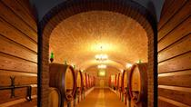 Private Full Day Amarone wine tasting and Garda lake from Venice, Venice, Wine Tasting & Winery ...