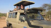 4 Day Luxury Safari Lake Manyara Serengeti and Norongoro, Arusha, 4-Day Tours