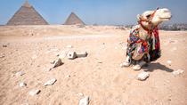 Safari Tour: Horse or Camel Ride for Sunrise at Giza, Cairo, Safaris