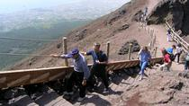 Half-Day Trip to Mt. Vesuvius from Naples, Naples, Private Sightseeing Tours