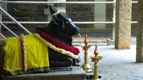 Malleswaram heritage walk, a culture tour in Bangalore, Bangalore, City Tours