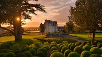 Small Group Day Trip to Loire Valley's Chateau d'Amboise and a Chinon Winery from Paris