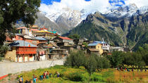 A day with Locals from Dharamshala, Dharmasala, Cultural Tours