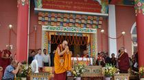 Dharamshala Tibetan Heritage and Nature Day Tour, Dharmasala, Day Trips