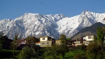 Nature and Village Hike in Dharamshala, Dharmasala, Hiking & Camping