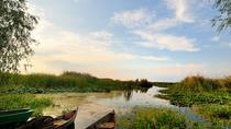 Danube Delta Private Tour from Bucharest, ブカレスト