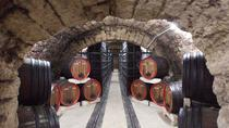 Private Wine Tasting Tour at Urlateanu Manor from Bucharest, Bucarest