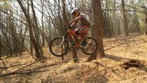 1-Day Advanced Downhill Single Track Doi Suthep National Park in Chiang Mai, Chiang Mai, Bike &...